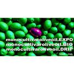 2_monocultivar